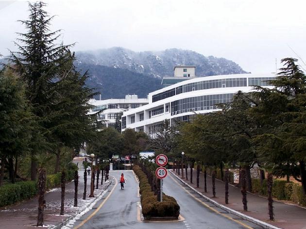 quang cảnh đại học Busan