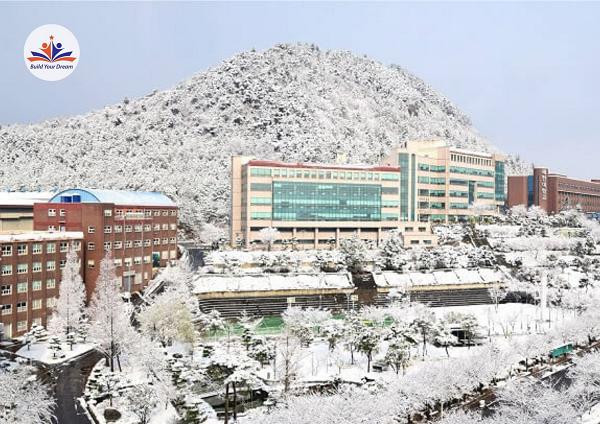 Đại học Sehan vào mùa đông