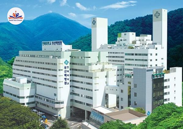 Inje University